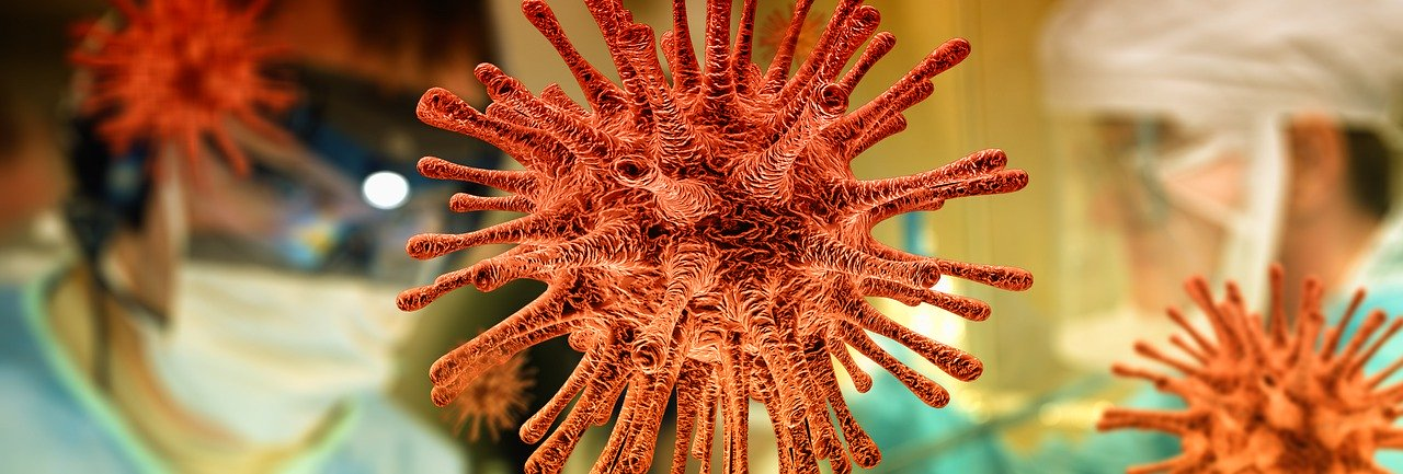 Corona virus - Natural History Curiosities remains open