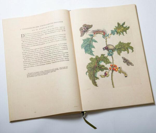 Maria Sibylla Merian: Metamorphosis insectorum Surinamensium (2016 reprint)