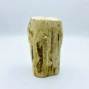 Palish petrified wood from Indonesia (22 million year old)