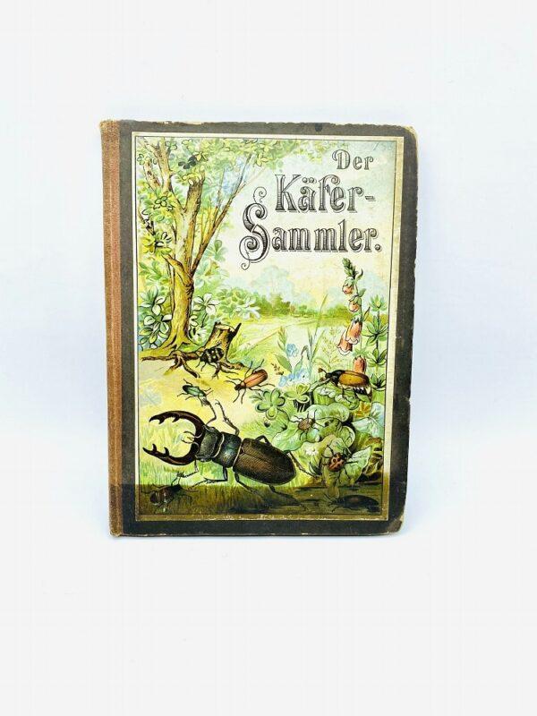 Der kleine Käfersammler - Löwensohn (1900)